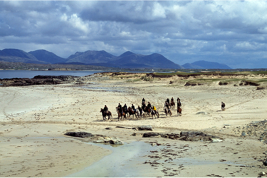 Faire du cheval dans le ring de Kerry