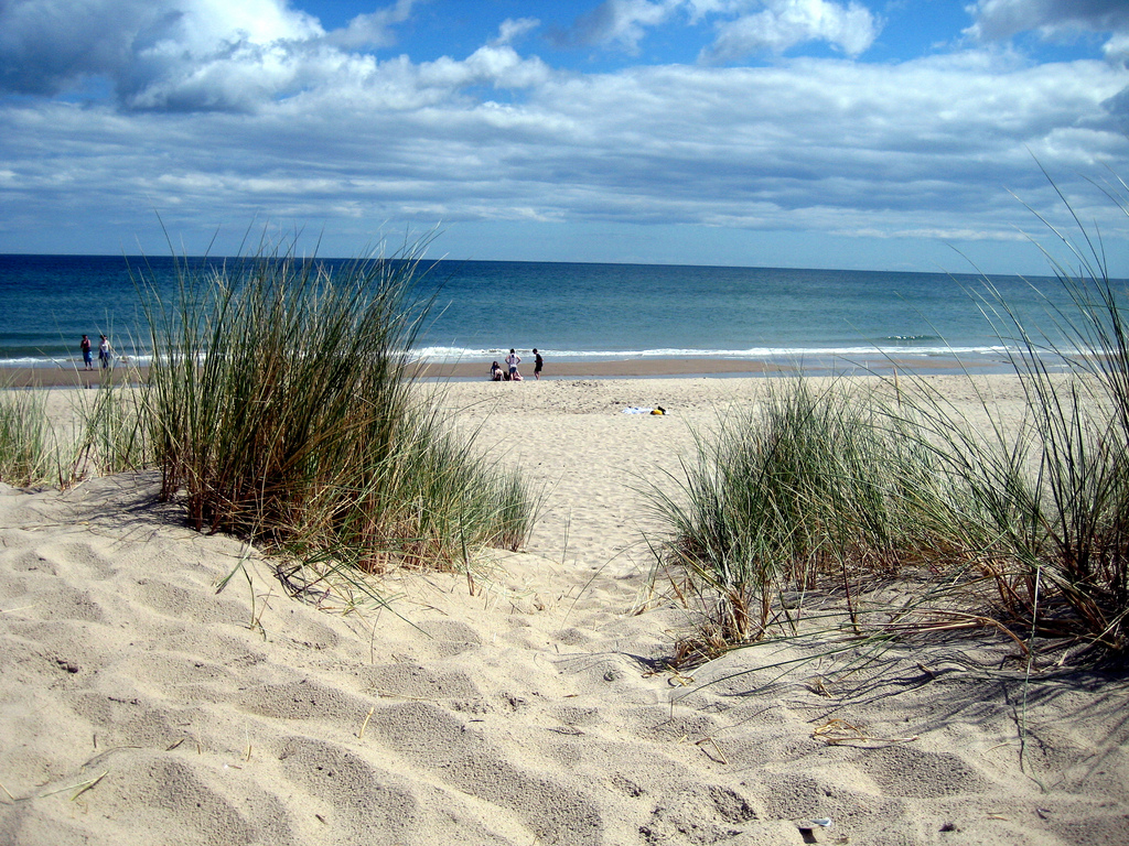 Curracloe Beach