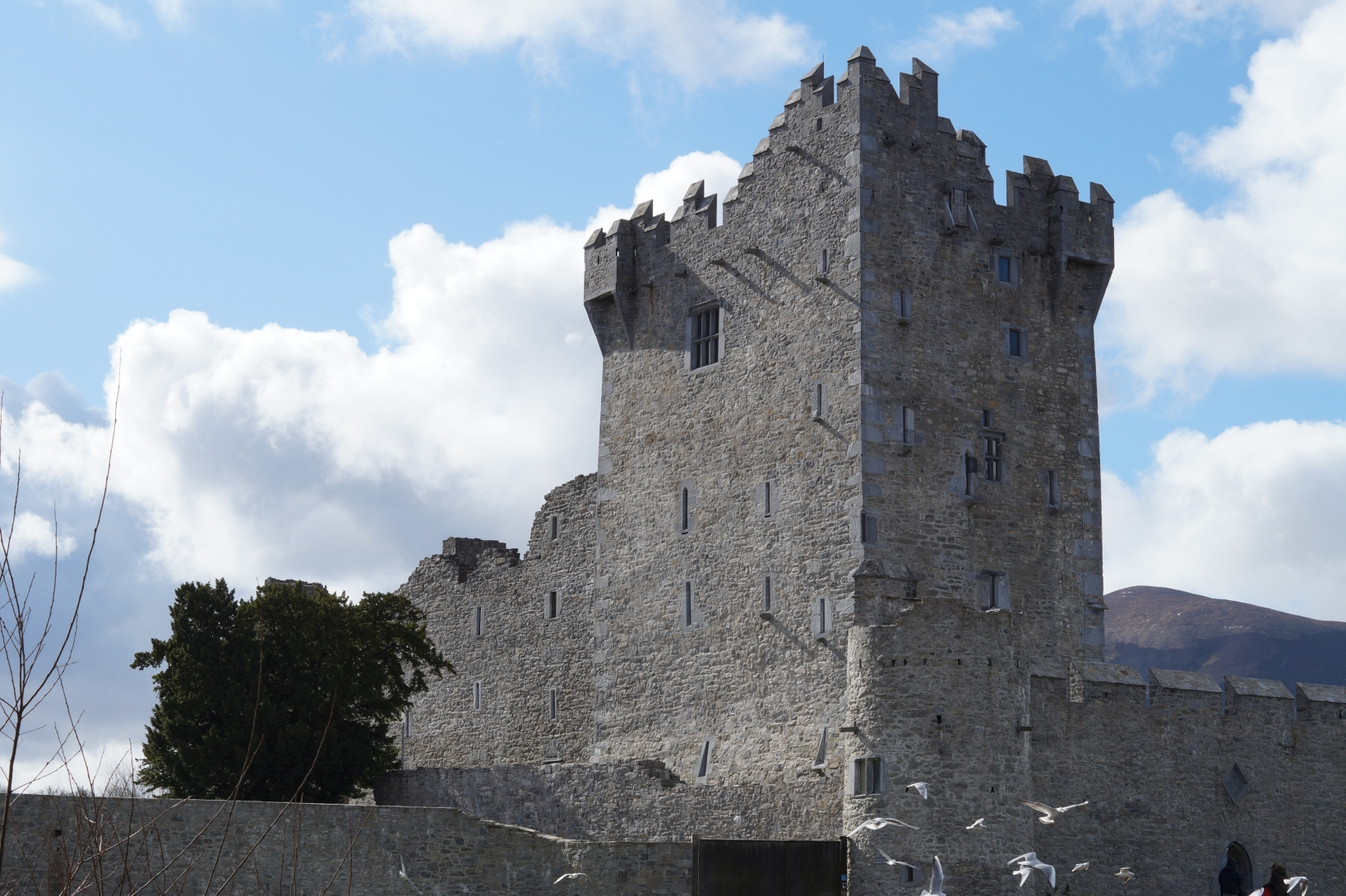 ross-castle-in-killarney